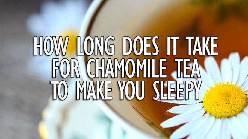how long does it take for chamomile tea to make you sleepy