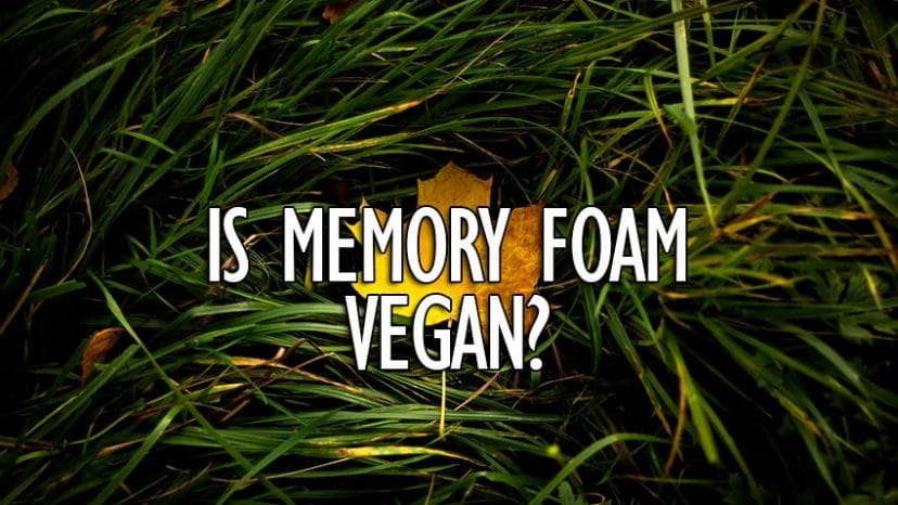 is memory foam vegan